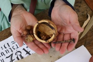 All you need is water. Oak galls and rusty nails: two of the main ingredients for ink