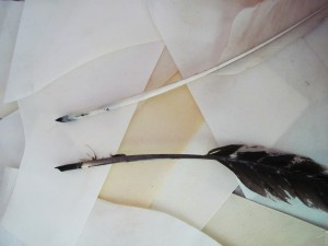 Cut quills showing left and right handed nibs cut from feathers that curve comfortably over the hand